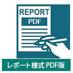 レポート様式 PDF版
